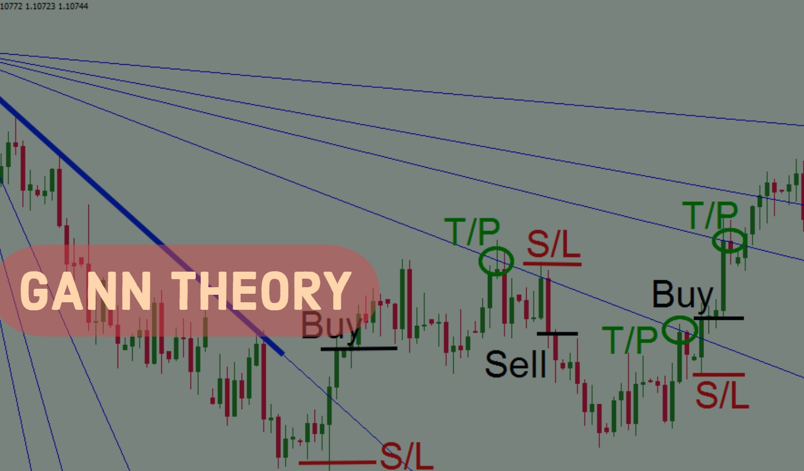 Gann Theory Course