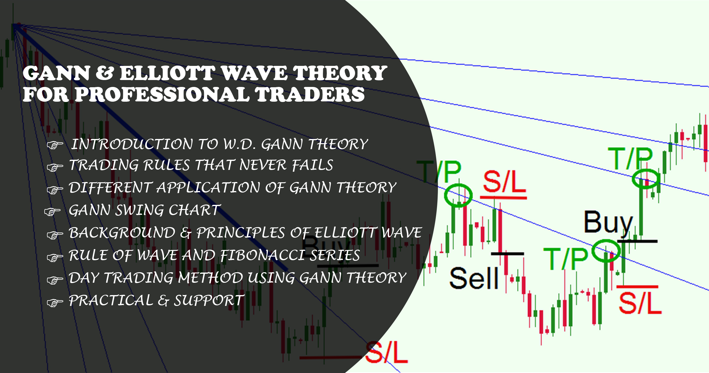 Gann Elliot Wave Theory Course